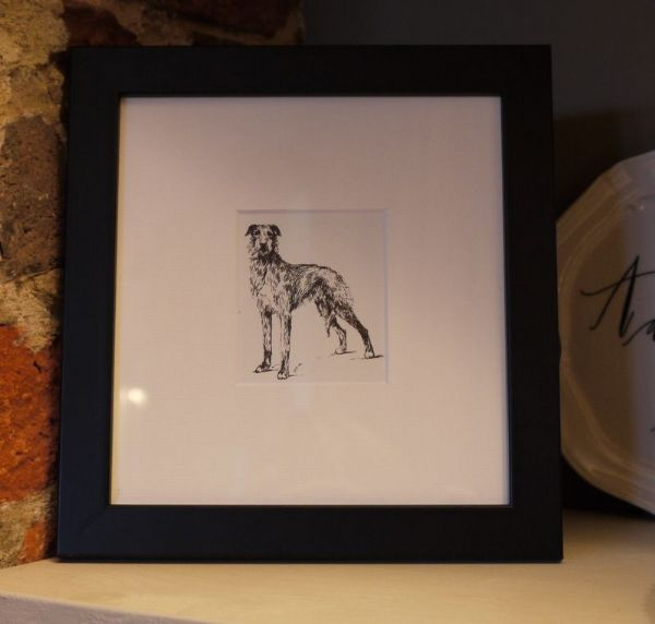 Little Lurcher standing - Lur O1 -  1960's print by Bridget Olerenshaw